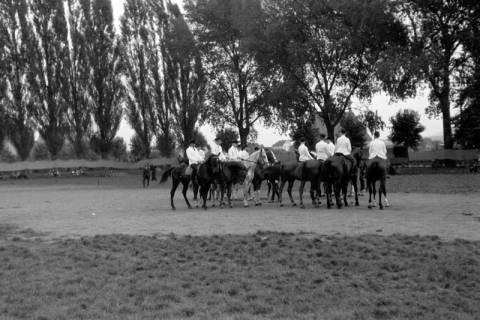 ARH NL Dierssen 0208/0025, Tag des Roten Kreuzes (Umzug und Reiten), 1949