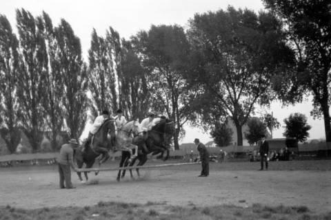 ARH NL Dierssen 0208/0026, Tag des Roten Kreuzes (Umzug und Reiten), 1949