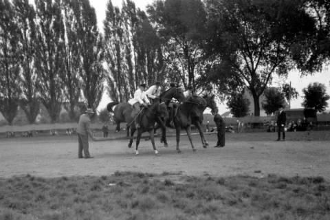 ARH NL Dierssen 0208/0027, Tag des Roten Kreuzes (Umzug und Reiten), 1949