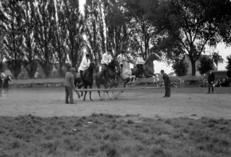 ARH NL Dierssen 0208/0028, Tag des Roten Kreuzes (Umzug und Reiten), 1949