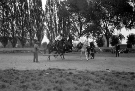 ARH NL Dierssen 0208/0029, Tag des Roten Kreuzes (Umzug und Reiten), 1949