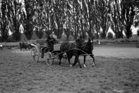 ARH NL Dierssen 0208/0030, Tag des Roten Kreuzes (Umzug und Reiten), 1949