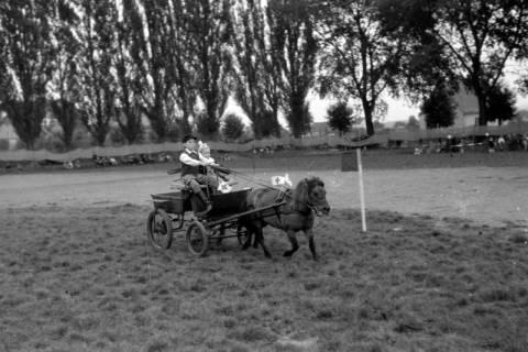 ARH NL Dierssen 0208/0031, Tag des Roten Kreuzes (Umzug und Reiten), 1949