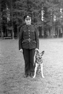 ARH NL Dierssen 0214/0007, Hundeschule, 1949