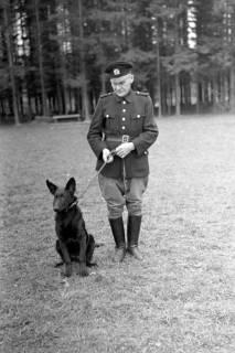 ARH NL Dierssen 0214/0008, Hundeschule, 1949