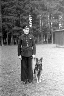 ARH NL Dierssen 0214/0009, Hundeschule, 1949