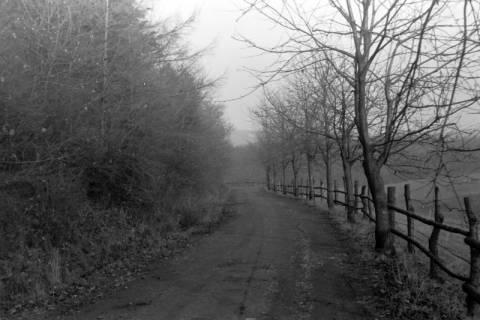 ARH NL Dierssen 0217/0015, Straßenbau, 1949