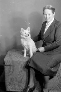 ARH NL Dierssen 0221/0022, Frau Schaper mit Spitz, 1949