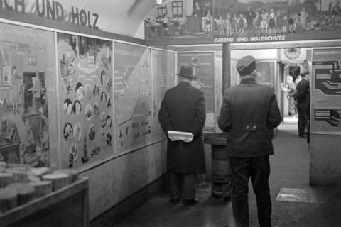 """ARH NL Dierssen 1005/0022, Ausstellung """"Der Wald..."""" (Herzog Ernst-August), 1950"""