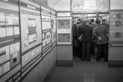 """ARH NL Dierssen 1005/0023, Ausstellung """"Der Wald..."""" (Herzog Ernst-August), 1950"""