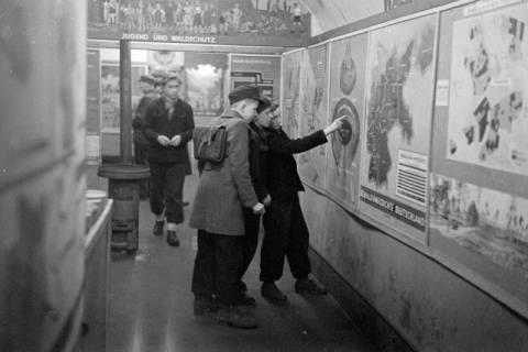 """ARH NL Dierssen 1005/0026, Ausstellung """"Der Wald..."""" (Herzog Ernst-August), 1950"""