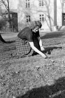 ARH NL Dierssen 1008/0002, Privat Dierssen, 1950