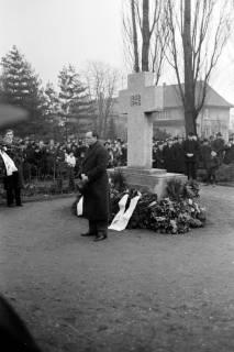 ARH NL Dierssen 1008/0008, Volkstrauertag - Feierstunde auf dem Springer Friedhof, 1950