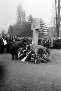 ARH NL Dierssen 1008/0009, Volkstrauertag - Feierstunde auf dem Springer Friedhof, 1950