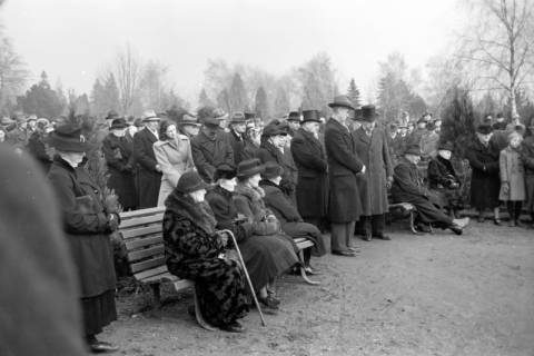 ARH NL Dierssen 1008/0012, Volkstrauertag - Feierstunde auf dem Springer Friedhof, 1950