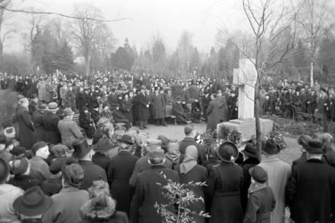 ARH NL Dierssen 1008/0013, Volkstrauertag - Feierstunde auf dem Springer Friedhof, 1950