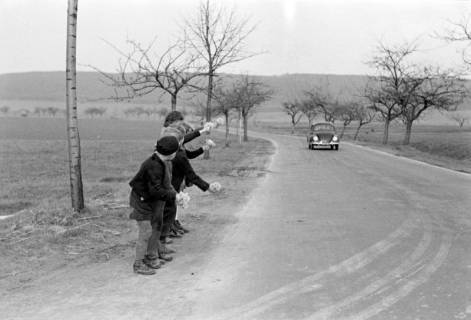ARH NL Dierssen 1016/0001, Kinder mit Schlüsselblumen, 1950