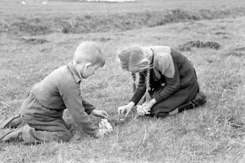 ARH NL Dierssen 1016/0005, Kinder mit Schlüsselblumen, 1950