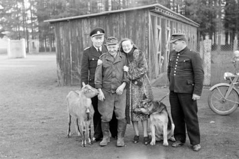 ARH NL Dierssen 1017/0001, Abrichteanstalt, 1950