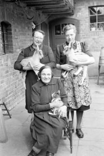 ARH NL Dierssen 1019/0020, Familie Eilert mit Tieren, 1950