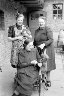 ARH NL Dierssen 1019/0023, Familie Eilert mit Tieren, 1950