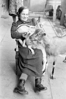 ARH NL Dierssen 1019/0024, Familie Eilert mit Tieren, 1950