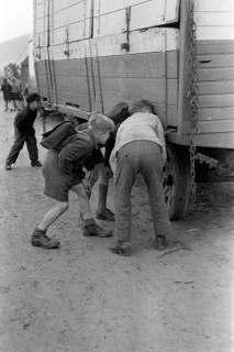 ARH NL Dierssen 1020/0002, Zirkus Althoff, 1950