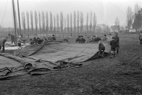 ARH NL Dierssen 1020/0007, Zirkus Althoff, 1950