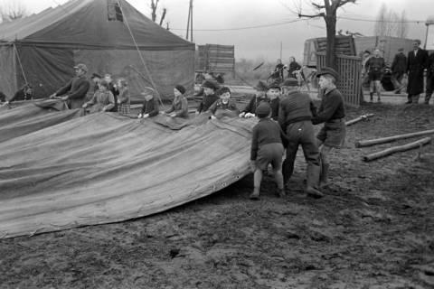 ARH NL Dierssen 1020/0009, Zirkus Althoff, 1950