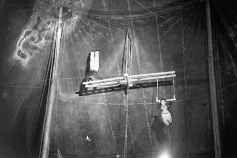 ARH NL Dierssen 1020/0011, Zirkus Althoff, 1950