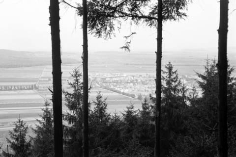 ARH NL Dierssen 1022/0022, Blick von Fahrenbrink auf Springe, 1950