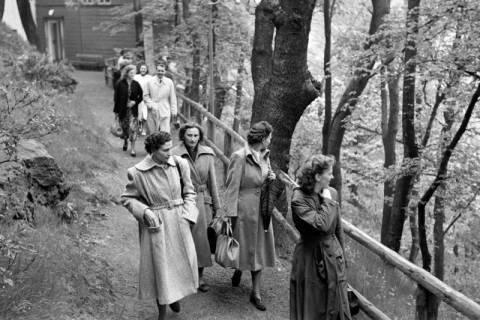 ARH NL Dierssen 1025/0005, Ausflug mit dem Niedersachsen Tanz-Express nach Bad Harzburg, 1950