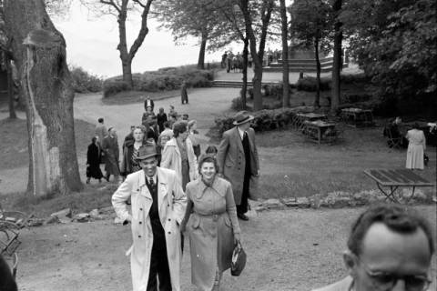ARH NL Dierssen 1025/0010, Ausflug mit dem Niedersachsen Tanz-Express nach Bad Harzburg, 1950