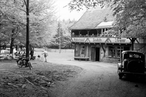 ARH NL Dierssen 1028/0014, An der Sennhütte im Osterwald, 1950