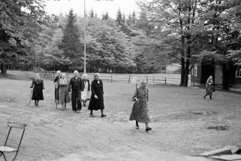 ARH NL Dierssen 1028/0015, An der Sennhütte im Osterwald, 1950