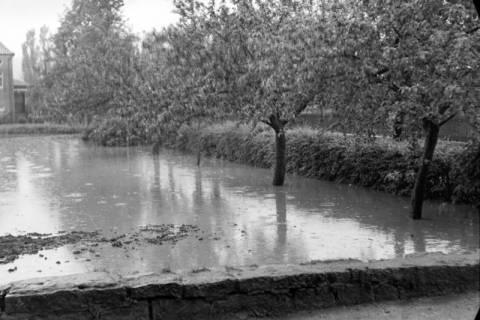 ARH NL Dierssen 1029/0006, Hochwasser in der Echternstraße, Springe, 1950