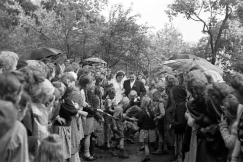 ARH NL Dierssen 1030/0002, Hochzeit Gassmann, Völksen, 1950