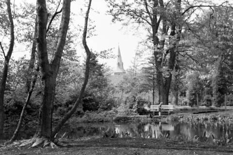 ARH NL Dierssen 1032/0002, Stadtpark, Springe, 1950