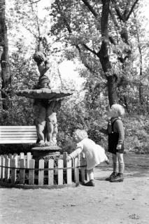 ARH NL Dierssen 1032/0004, Stadtpark, Springe, 1950