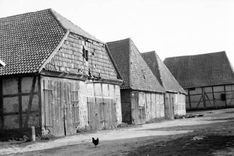ARH NL Dierssen 1035/0001, Unbekannte Gebäude, Pattensen, 1950