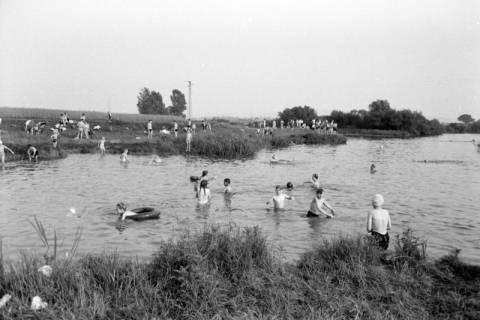 ARH NL Dierssen 1036/0015, Baden in der alten Leine bei Schulenburg, 1950