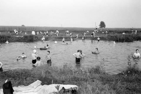 ARH NL Dierssen 1036/0017, Baden in der alten Leine bei Schulenburg, 1950