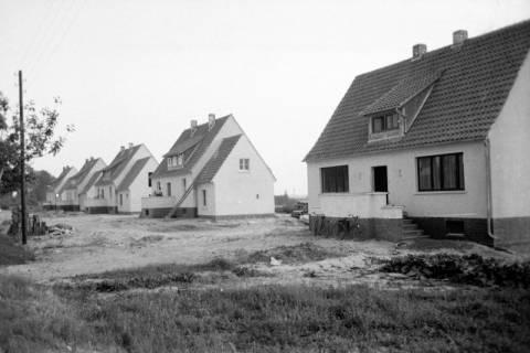 ARH NL Dierssen 1036/0019, Siedlung, Rössing, 1950