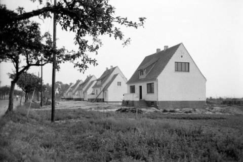 ARH NL Dierssen 1036/0020, Siedlung, Rössing, 1950