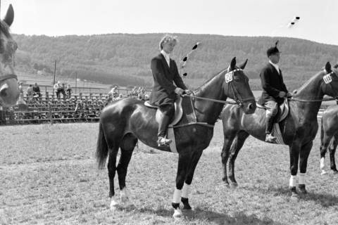 ARH NL Dierssen 1046/0015, Reitturnier, Springe, 1950
