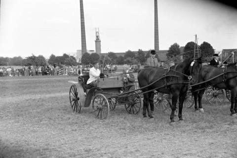ARH NL Dierssen 1048/0011, Reitturnier, Springe, 1950