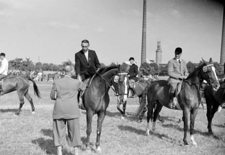 ARH NL Dierssen 1049/0011, Reitturnier, Springe, 1950