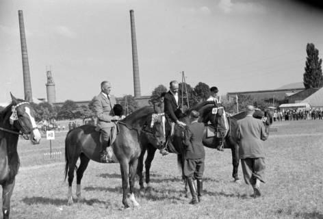 ARH NL Dierssen 1049/0012, Reitturnier, Springe, 1950
