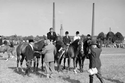 ARH NL Dierssen 1049/0020, Reitturnier, Springe, 1950