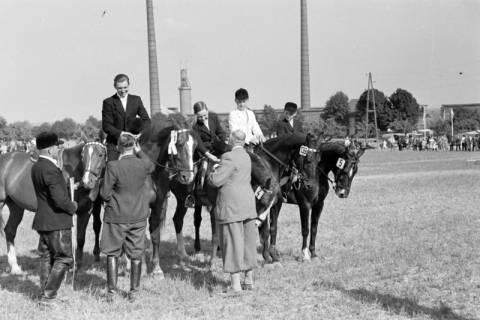 ARH NL Dierssen 1049/0021, Reitturnier, Springe, 1950